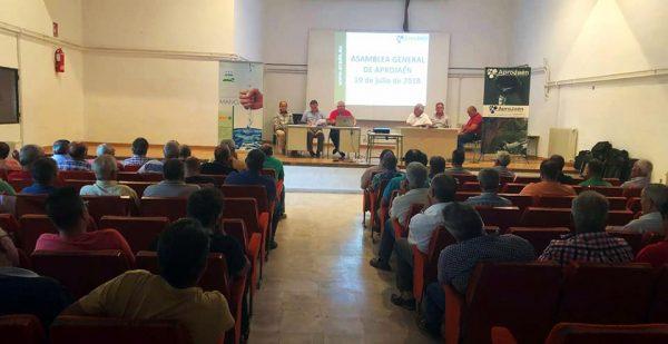 Asamblea General 2018 de APROJaén