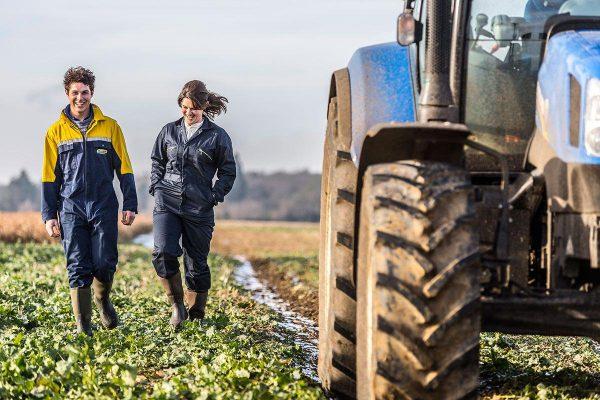 Ampliado el plazo de solicitud para jóvenes agricultores y modernización de invernaderos