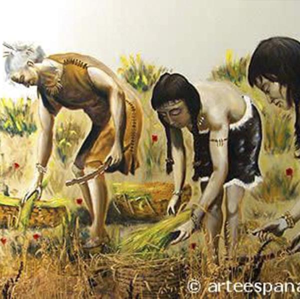 Feliz Día Mundial de la Agricultura