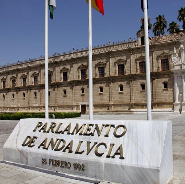 El Parlamento de Andalucía insta a la CHG la regularización de los regadíos de olivar acogidos a riegos extraordinarios